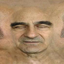 STELARC / ALTERNATE EMBODIMENTS, PROSTETHIC HEAD