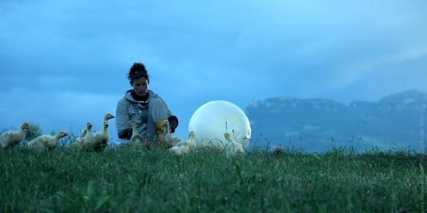 Agnes Meyer-Brandis –  MOBILE MOON, Astronaut Training Method No. V, Videostill, Moon Goose Colony 2011 @ Agnes Meyer-Brandis, VG-Bild Kunst 2016
