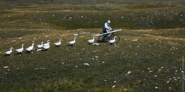 Agnes Meyer-Brandis – HIGH ALTITUDE TRAININGSCAMP II, Astronaut Training Method No. XI, Videostill, Moon Goose Colony 2011 @ Agnes Meyer-Brandis, VG-Bild Kunst 2016