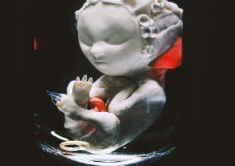 Designer Babies – Pinar Yoldas