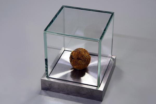 ianoosh Motallebi / Terrestrialball